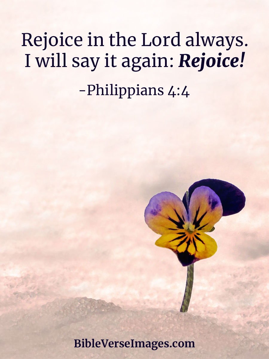 Bible Quote - Philippians 4:4