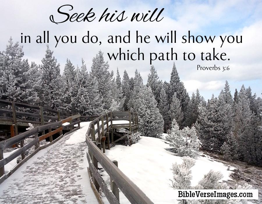 bible verse proverbs 3 6 bible verse images