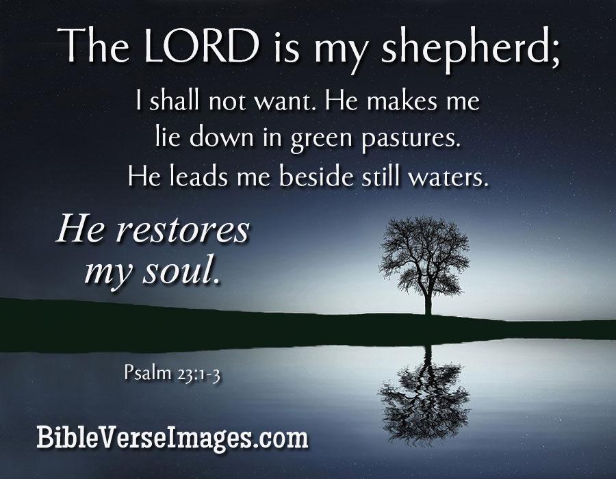 Bible Verse Psalm 23 1 3 Bible Verse Images