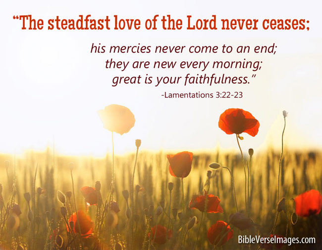 Comforting Bible Verse - Lamentations 3:22-23