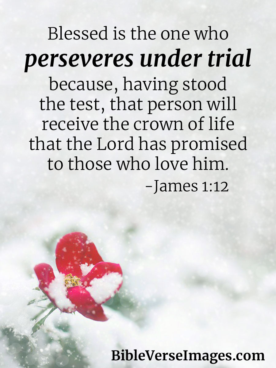 Inspirational Bible Quotes About Life Fair Encouraging Bible Verse  James 112  Bible Verse Images