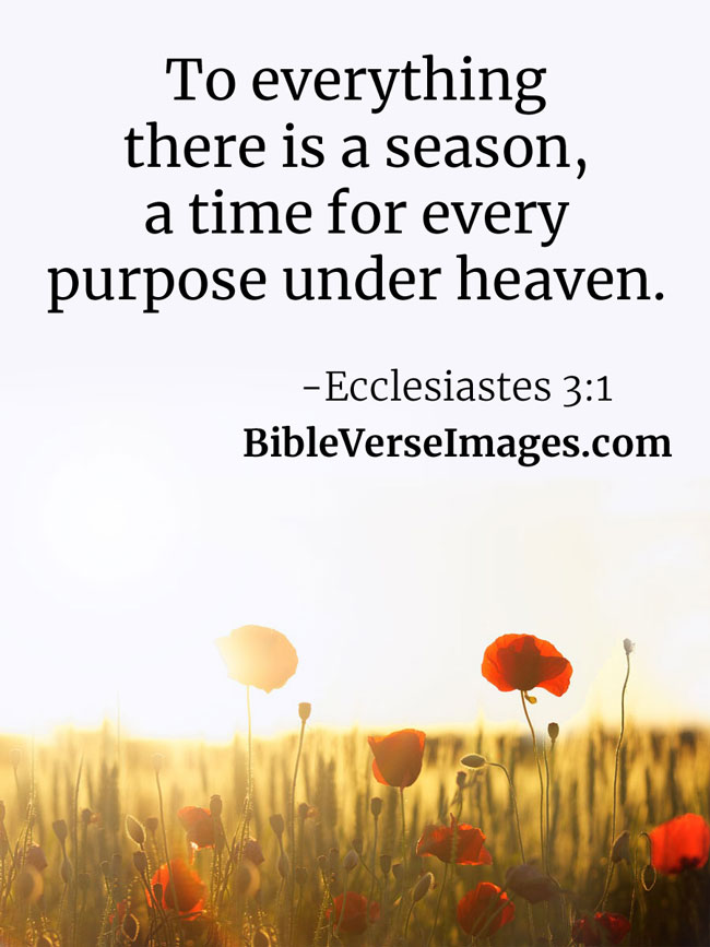 Encouraging Bible Verse