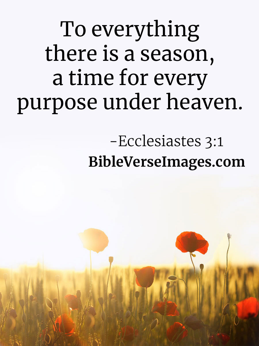 Encouraging Bible Verse - Ecclesiastes 3:1