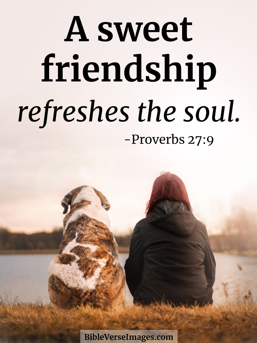 Bible Verse about Friendship - Proverbs 27:9