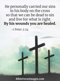 Bible Verse about Healing - 1 Peter 2:24