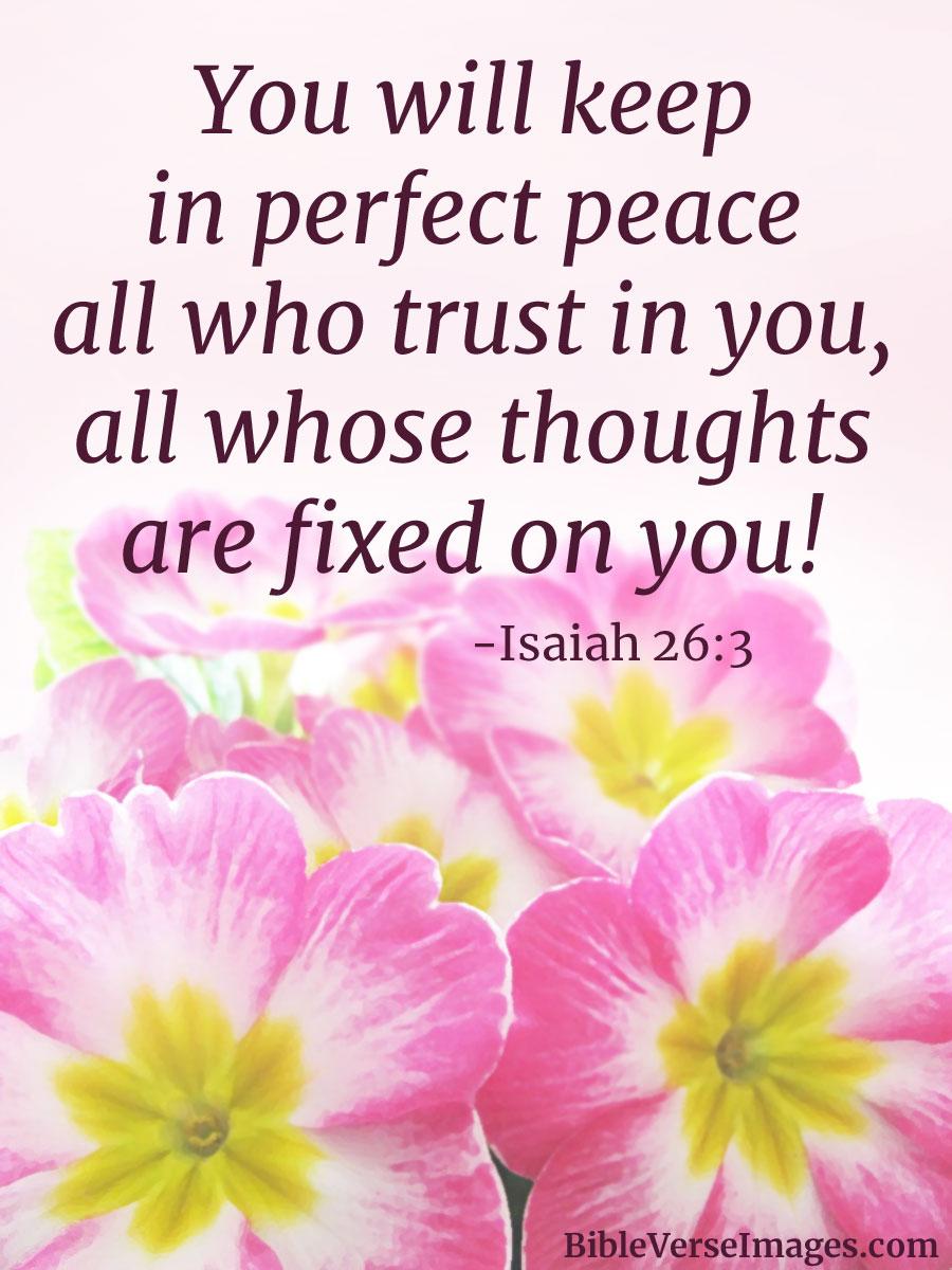 scripture verses on peace