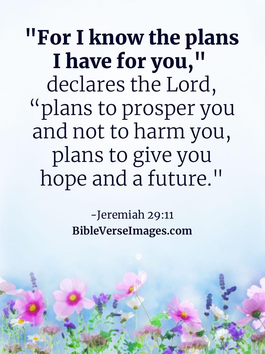 Inspirational bible verses bible verse images inspirational bible verse jeremiah 2911 m4hsunfo