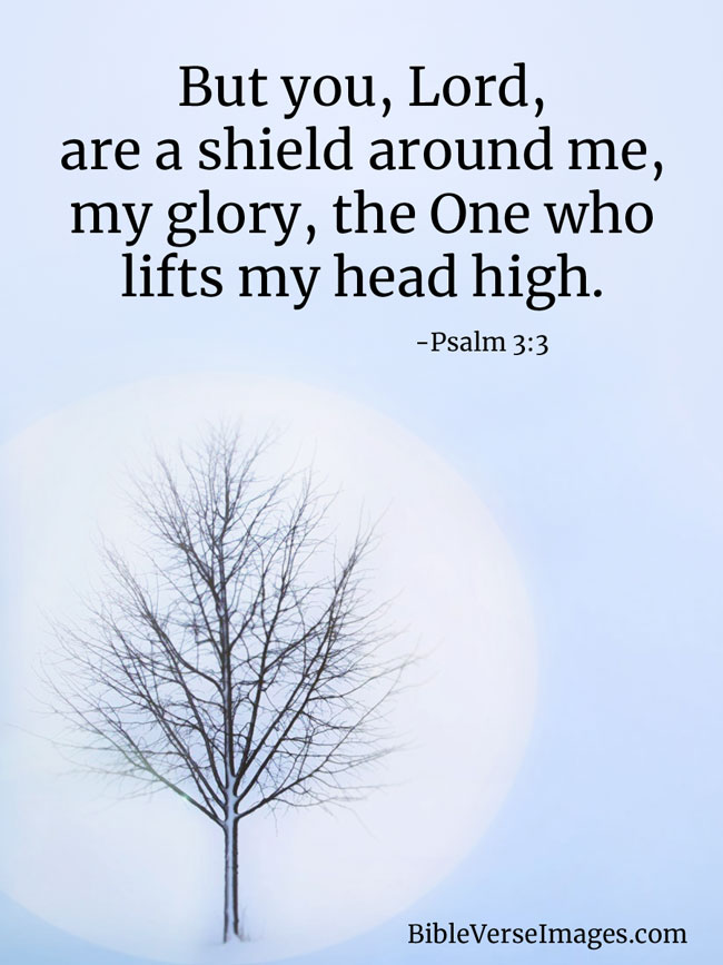 Inspirational Bible Verse - Psalm 3:3