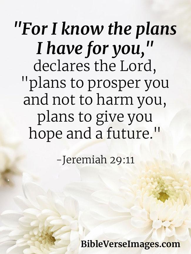 Jeremiah 29:11 - Inspirational Bible Verse - Bible Verse Images