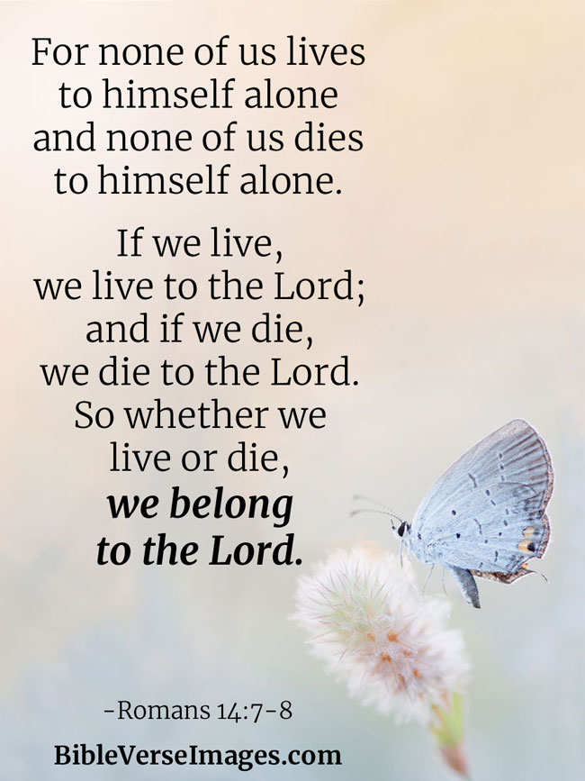 Bible Verse about Life - Romans 14:7-8