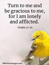 Loneliness Bible Verse - Psalm 25:16