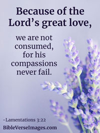 Love Bible Verse - Lamentations 3:22