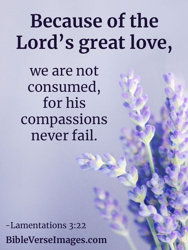 Bible Verse about Love - Lamentations 3:22