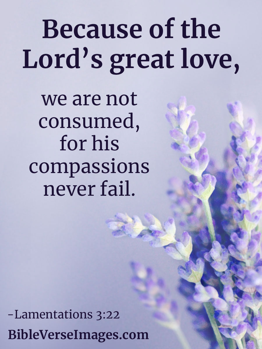 20 bible verses about love bible verse images