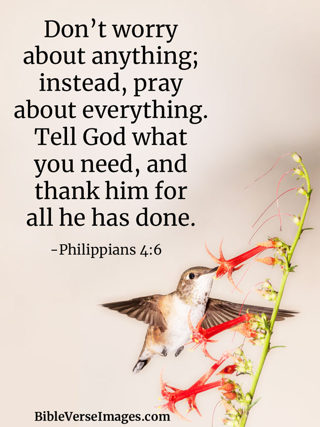 Bible Verse about Prayer - Philippians 4:6