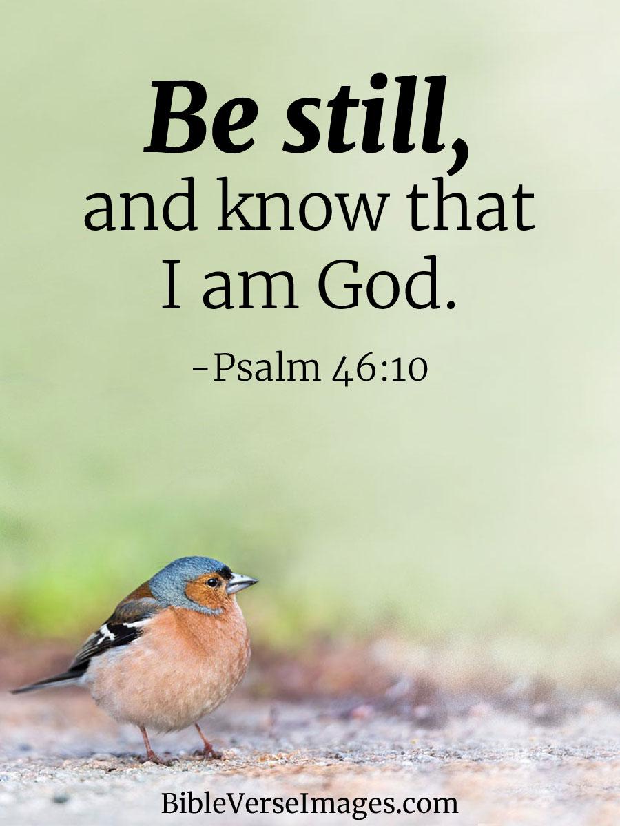 Psalm 46:10 - Best Bible Verse - Bible Verse Images