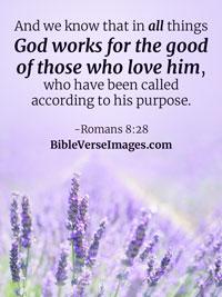 john 3 16 best bible verse bible verse images