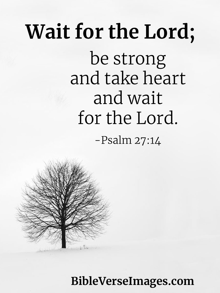 Bible Verse about Strength - Psalm 27:14 - Bible Verse Images