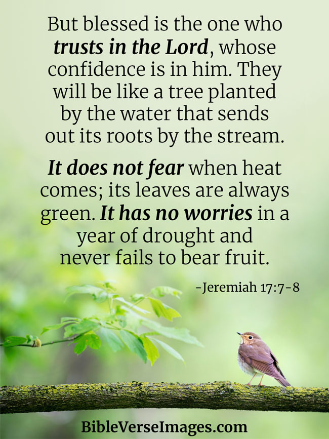 Bible Verse about Stress - Jeremiah 17:7-8